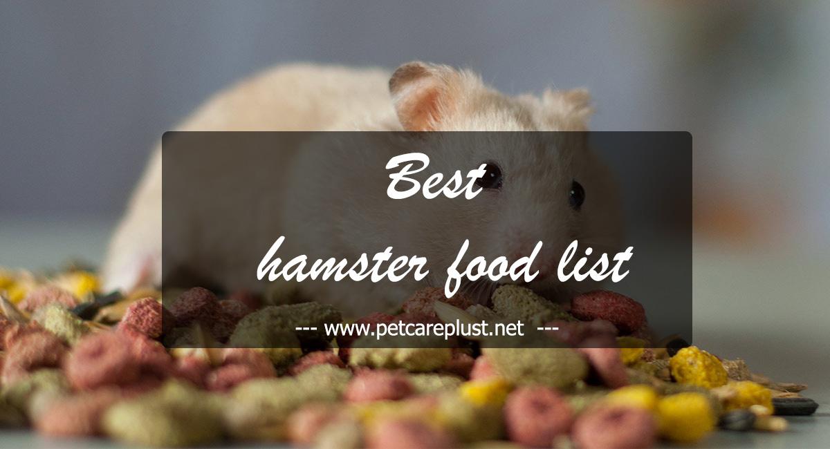 Top 25 Best Hamster Foods - Pet Care Plus