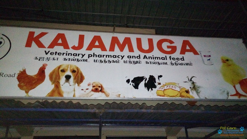 Kajamuga ,Vet pharmacy and Animal feed.jpg