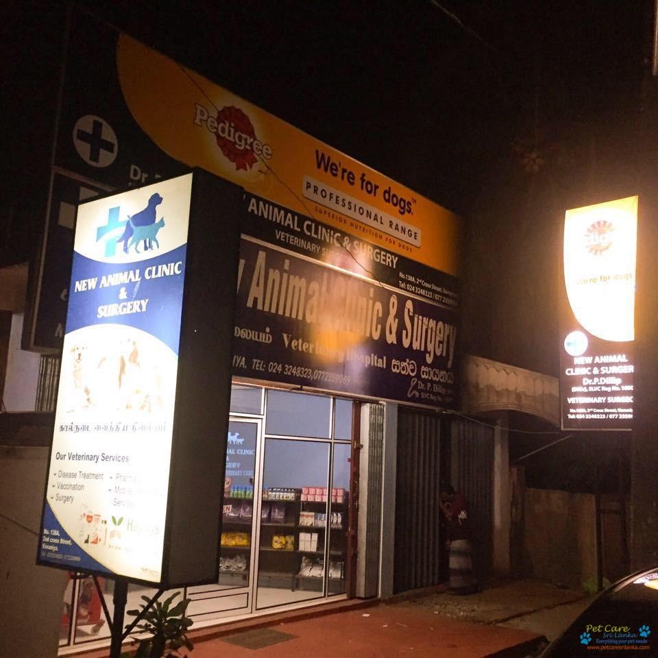 New Animal clinic and Surgery Veterinary Hospital2.jpg