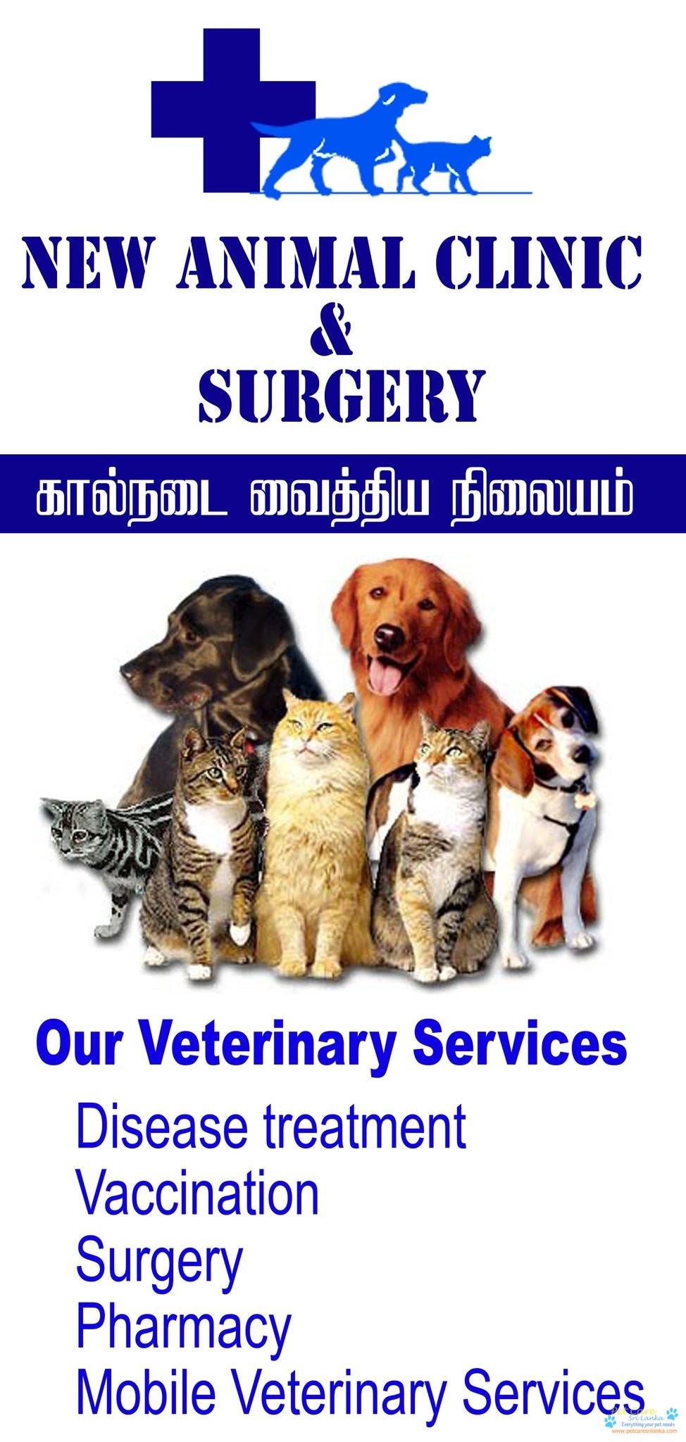 New Animal clinic and Surgery Veterinary Hospital5.jpg