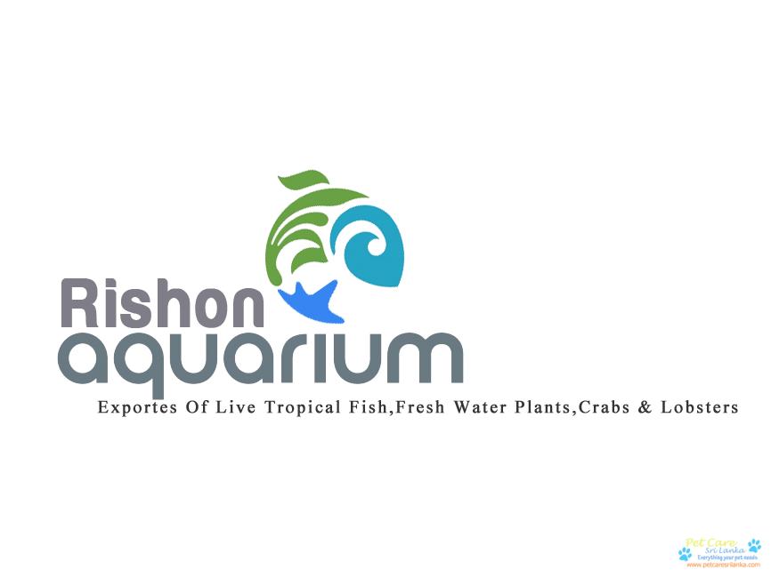 Rishon Aquarium.png