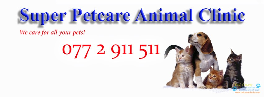 Super Petcare Animal Clinic.jpg