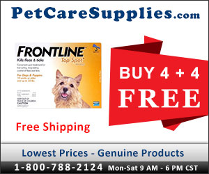Buy 4, Get 4 Doses Free + 10% Extra Discount & Free Shipping across USA. Frontline Top Spot is a full proof topical treatment that kills fleas within 24 hours and remains effective for four continuous weeks.