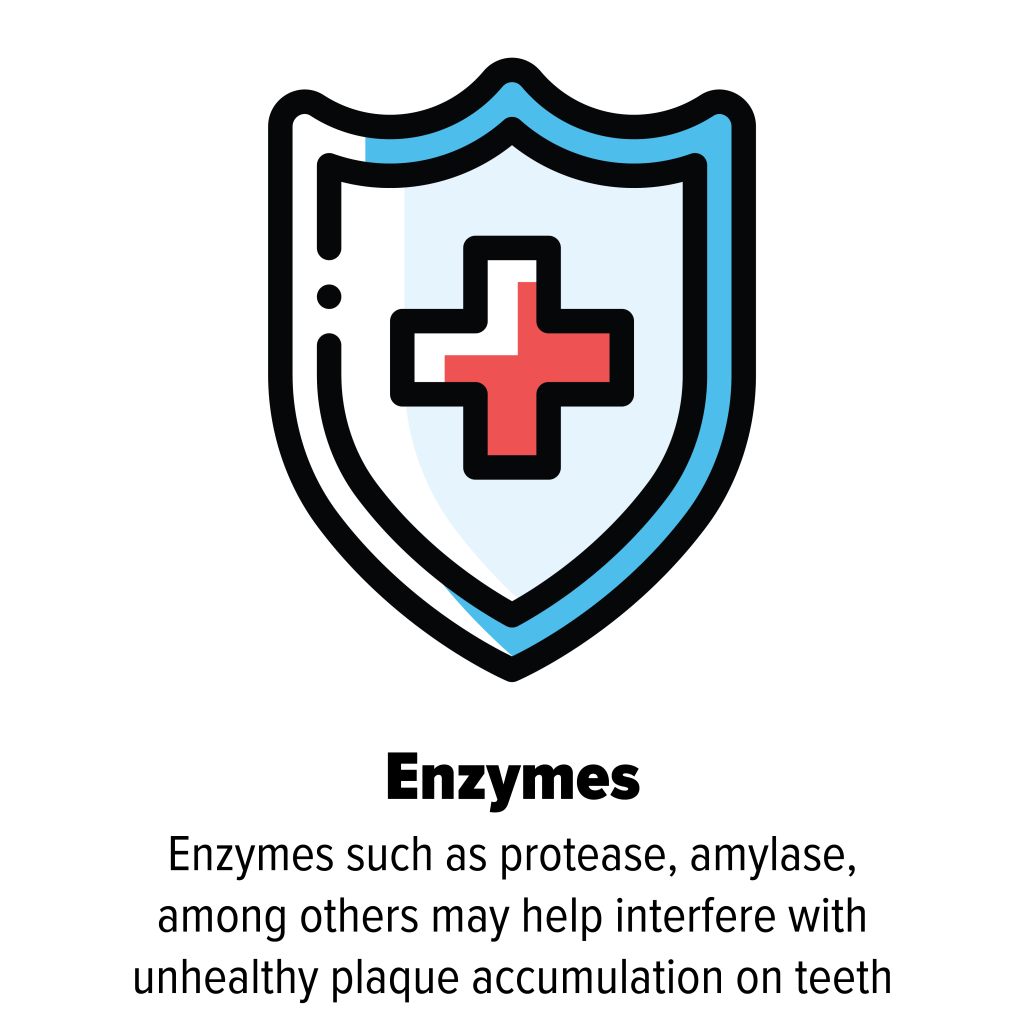 Icon-Enzymes