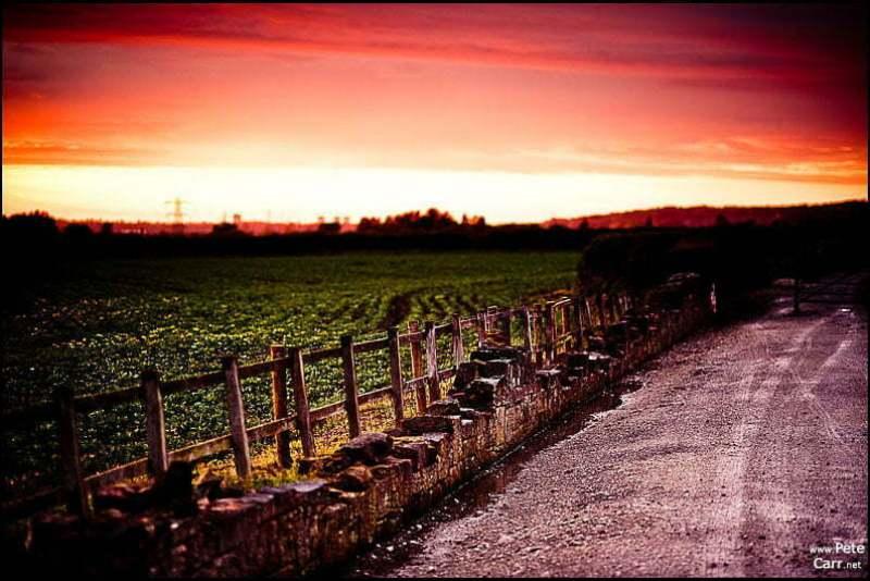 Storeton Landscape
