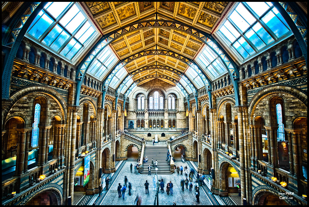 Central Hall inside the Natural History Museum