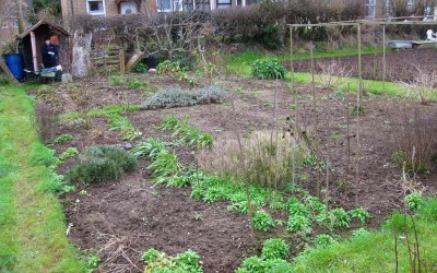 Get Yourself An Allotment