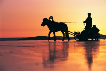 A horse drawn sled on ice under a colourful sky in Mongolia. Photo by conservation photographer and travel photographer Pete Oxford.