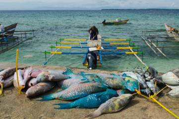 A local fish catch is shown on the shore. Photo by conservation photographer Pete Oxford.