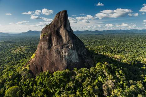 Bottle Mountain in Guyana is shown with the rainforest leading up to its base. Photograph by aerial photographer and conservation photographer Pete Oxford.