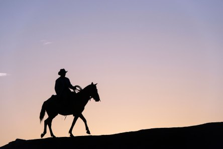An Amerindian cowboy ride his horse along the crest of a hill, silhouetting himself against the purple sky. Photo by travel photographer and conservation photographer Pete Oxford.