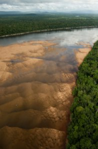 The Essequibo River, the largest in Guyana. Photo by conservation photographer and landscape photographer Pete Oxford.