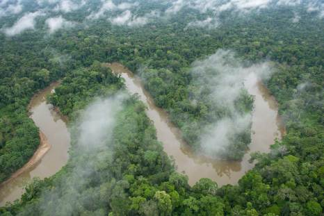 Tiputini River meanders through the rainforest of Ecuador. Photograph by aerial photographer and conservation photographer Pete Oxford.