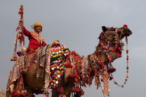 A man rides a decorated camel. Photo by travel Photographer Pete Oxford.