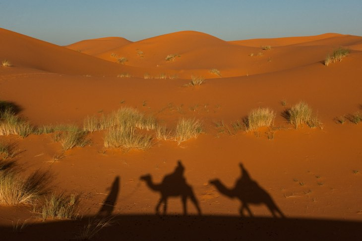 The silhouette of a man leading two camels with rides is shown on a sand dune. Photographer by travel photographer Pete Oxford.