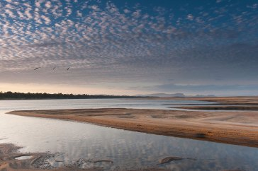One of the longest rivers in South America the Orinoco River shows calm waters below white puffy clouds. Photograph by conservation photographer and landscape photographer Pete Oxford.