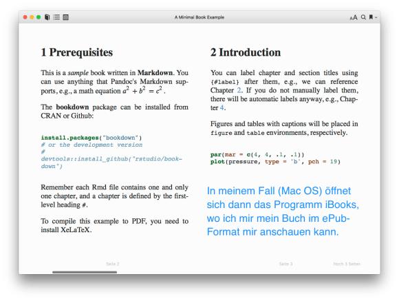 screenshot: Das eBook in Ihrem eBook-Reader anschauen