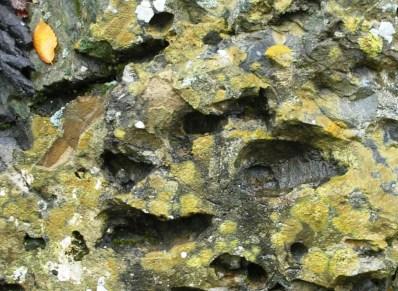Autumn Rocks, West Branch near Ripogenus Dam, Maine