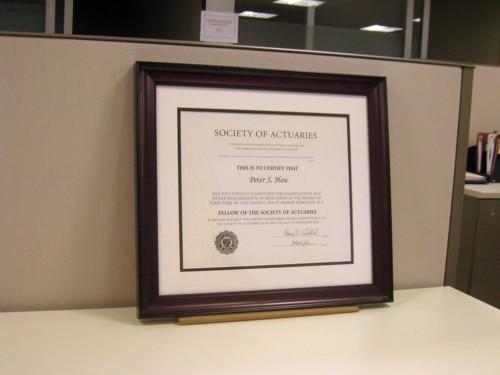 FSA Certificate Framed – Peter\'s Blog
