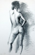 Willow charcoal. compressed charcoal