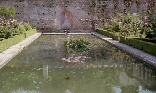 May 2017 Alhambra OM2 Fuji400 1