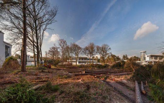 Hilversum – Landgoed Zonnestraal