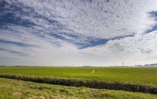 Nederland – Toekomst laagveen