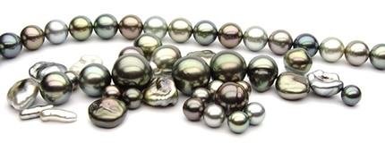 tahitian-south-sea-pearl.jpg