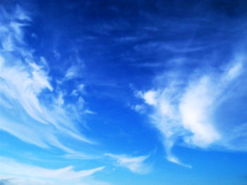Blue skies / Smiling at me / Nothing but blue skies / Do I see     Bluebirds / Singing a song / Nothing but bluebirds / All day long