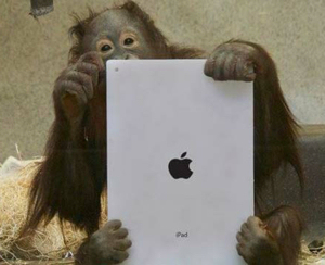 Smarter than the average iPad user?