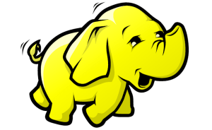Hadoop the Elephant