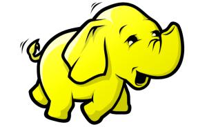 Hadoop the Elephant