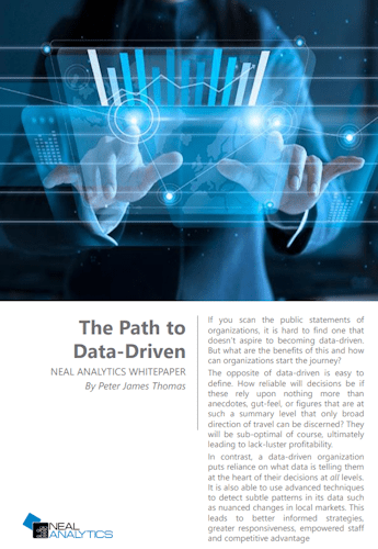 Neal Analytics White Paper - The Path to Data-Driven