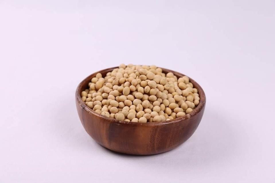 콩, 대두레시틴