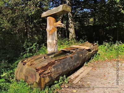 Jägerwiese im Steinbachbtal