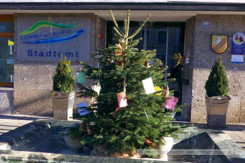Wunschchristbaum der Stadtgemeinde Neumarkt am Wallersee