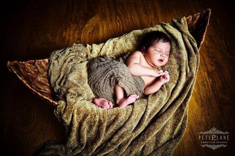 Newborn photographer New York