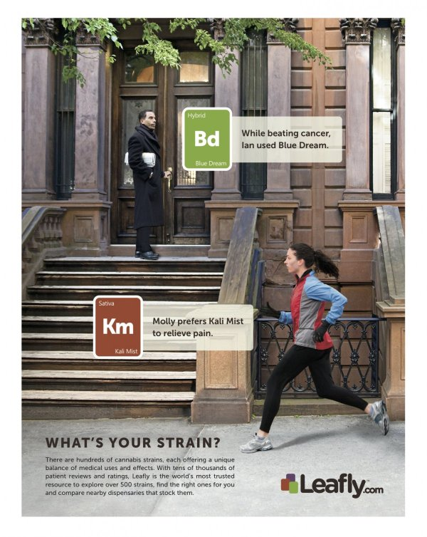 leafly print ad  (2)