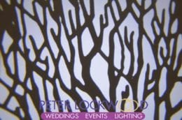 Wedding Lighting Hire tree projection images