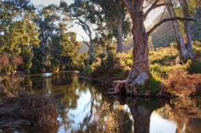 A Bend in the Creek - Arkaroola
