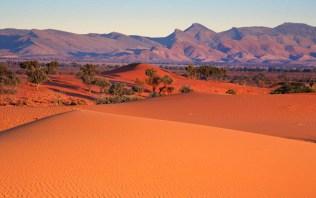 Nilpena Sands