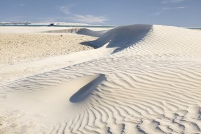 Dune at the Mouth
