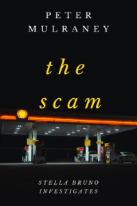 The Scam Cover