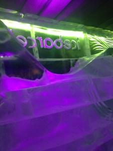 De icebar is koudddd brrrr