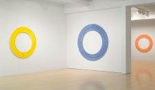 mangold-art-2011-002-ringpaintings-inst-02