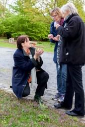 Kräuterpädagogin Birgit Dyla geht in die Knie. Schon am Wegesrand gilt es immer wieder Pflanzen zu bestimmen.