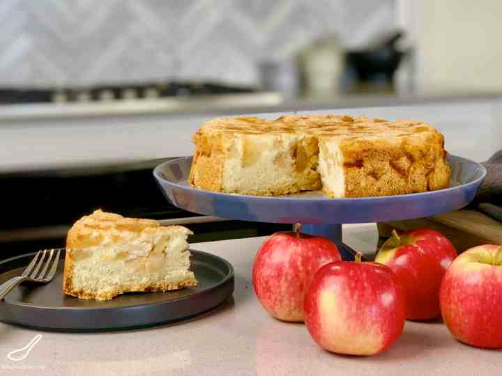 This is the best Russian Apple Cake recipe. It's light, fluffy, moist and delicious and made with only 5 ingredients. Not an apple pie, but an Apple cake sprinkled with cinnamon sugar - Known as Szarlotka in Poland. This is my wife Rita's Apple Sharlotka Cake (Шарлотка), it's like an Upside Down Apple Cake.