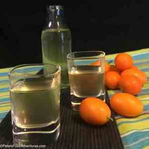 Making a tincture is easy, full of essential oils, anti-oxidants and vitamins, infused in Russian vodka. Known as Kumquatcello, similar to Limoncello, - Kumquat Nastoyka Tincture (настойка)