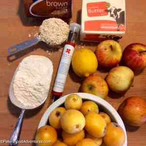 -Loquat Apple Crumble ingredients