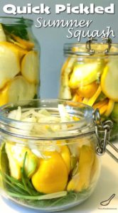 Quick Pickled Summer Squash - A great way to preserve your pattypan vegetables through pickling without canning. These are so good! Throw a few on a hamburger, Perfect for bbq season this summer!